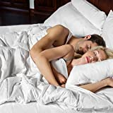 SMARTSILK Comforter and Pillow Protector (Queen), All-Natural Silk Filled Luxury, Certified Asthma and Allergy Friendly, Temperature Regulating All-Season Comfort
