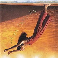 Brazil Classics/Vol.1 : Beleza Tropical (Compilé par David Byrne)