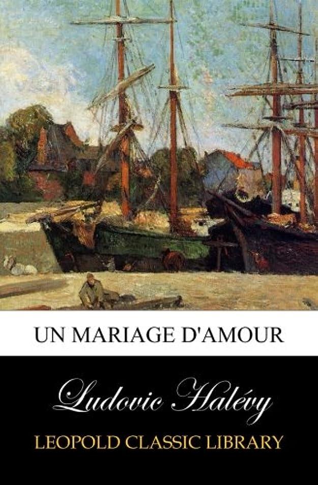 状休戦文庫本Un mariage d'amour