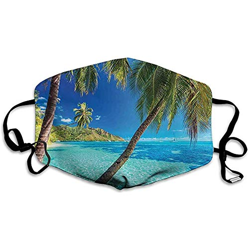 Preisvergleich Produktbild Ozean,  Bild einer tropischen Insel mit den Palmen und klarem Meeresstrand-Themendruck,  Türkisblau
