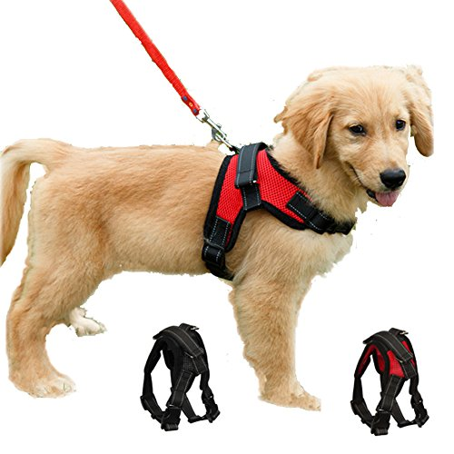 Funkeen Dog Harness Mesh Breathable Comfortable Pet Vest No Pull Adjustable Soft Padded Dog Power Strap (S, Red)