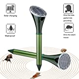 Solar-Powered Mole Repellent, Ultrasonic Gopher Repellent for Garden & Yard, Snake Repellent, Vole Repellent, Groundhog Repeller, Ultrasonic Pest Control for Outdoors