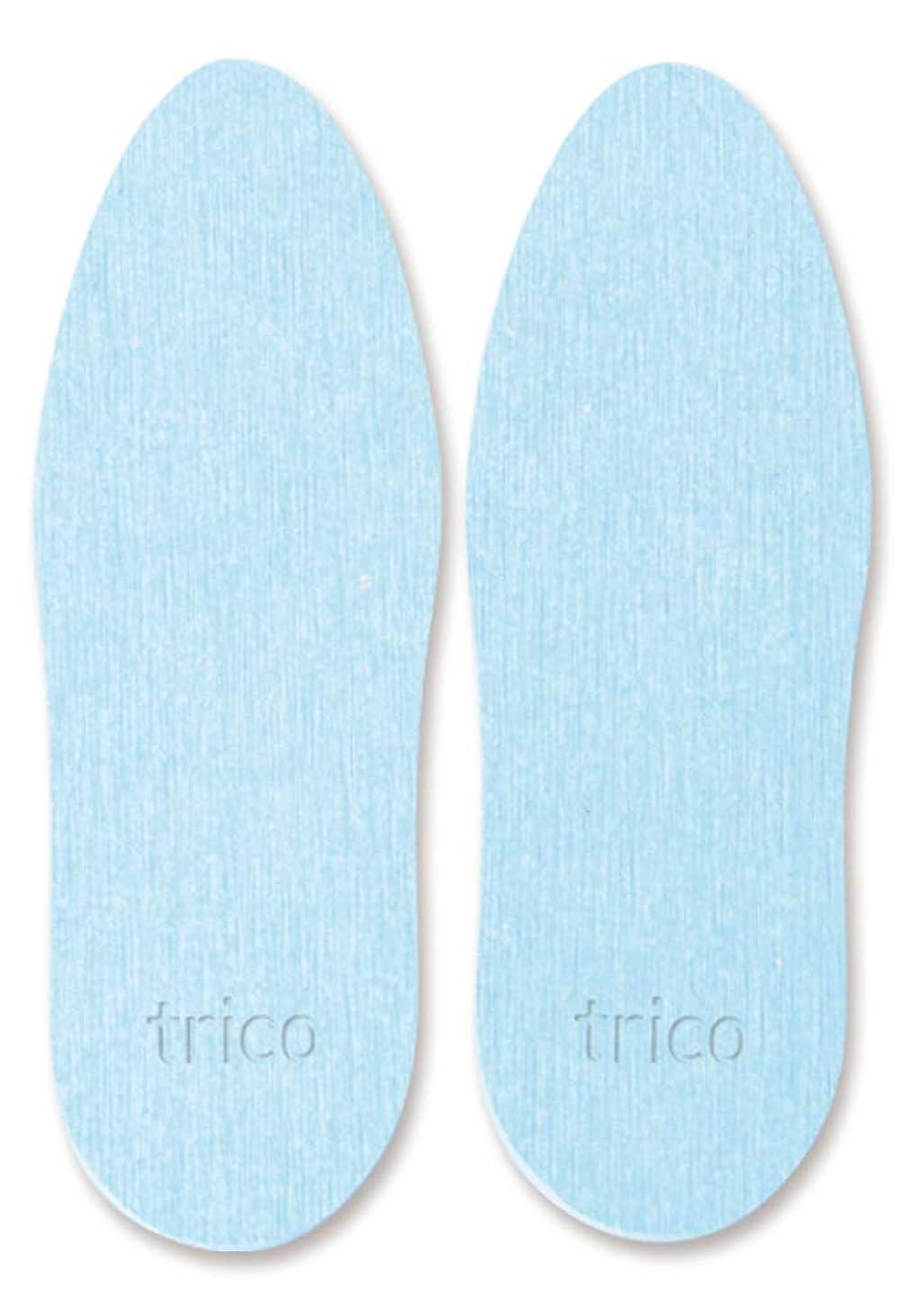 過ち節約するにぎやかtrico 靴の消臭 珪藻土 シューズドライプレート ブルー CTZ-18-02