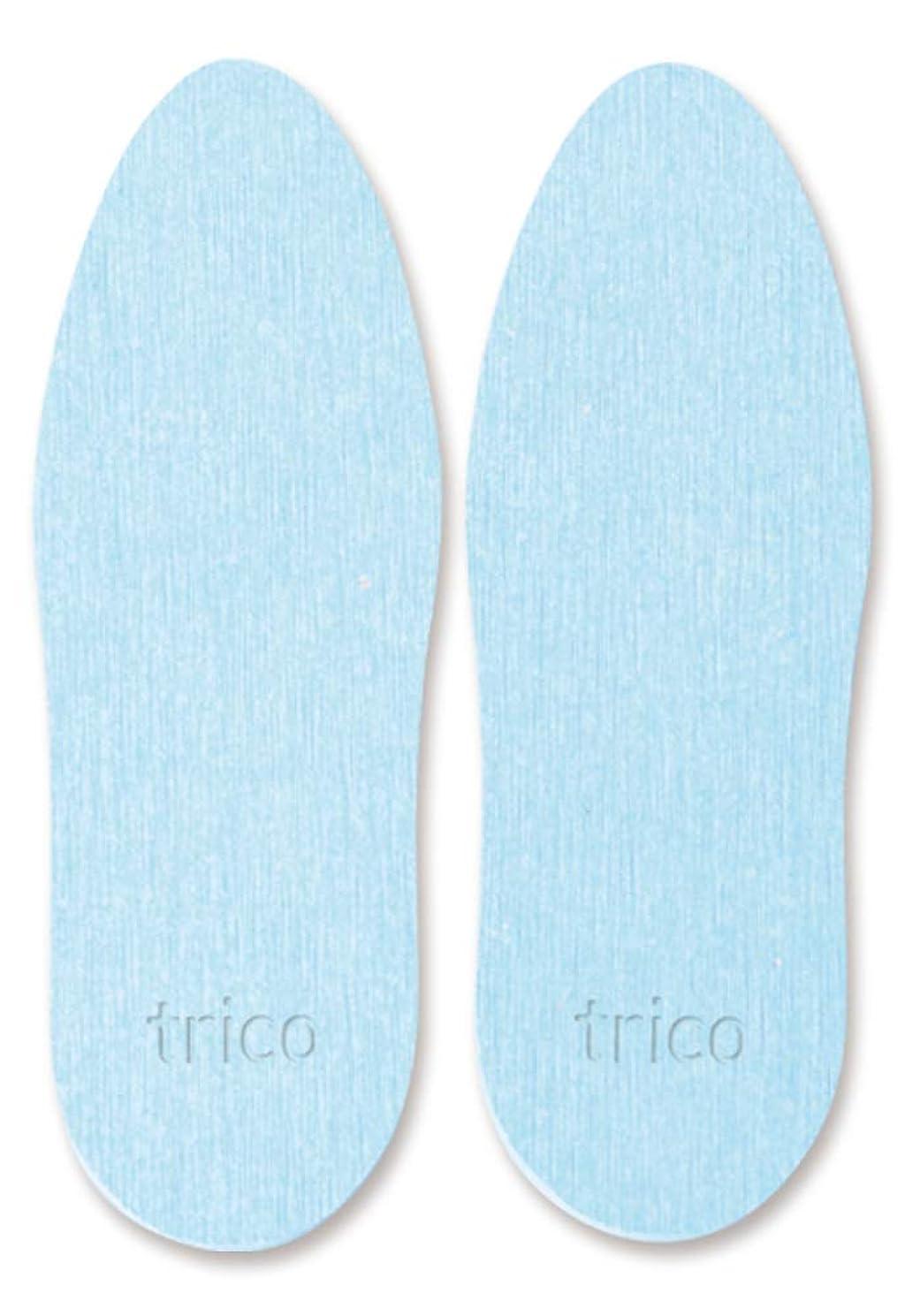 旅証人実験をするtrico 靴の消臭 珪藻土 シューズドライプレート ブルー CTZ-18-02