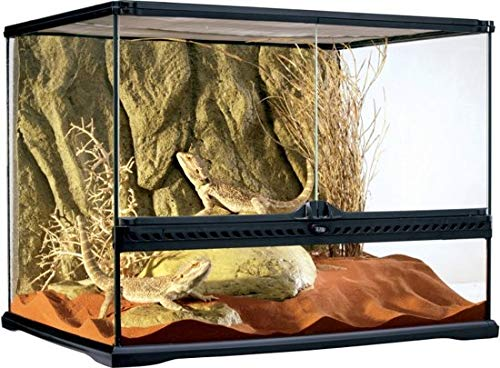 Exo Terra Terrarium Glas incl achterwand Medium - 60 x 45 x 45cm