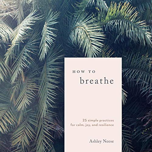How to Breathe audiobook cover art
