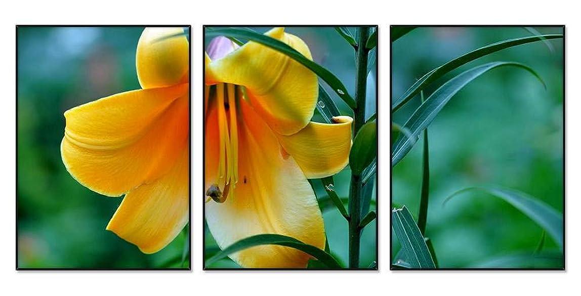 孤独なコンテンポラリー葉を集める黄色い花、ユリ 風景の写真 アルミ合金アートフレーム 額縁 壁掛け ホーム装飾画 装飾的な絵画 壁の装飾 ポスター 三連画(40x60cmx3枚 ブラックフレーム)