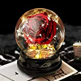 Deluxsa Enchanted Red Silk Rose,Beauty and The Beast Rose with Fallen Petals in A Light Dome,Home/Office or Home Decorations, Anniversary, Mothers Day, (Enchanted Rose)