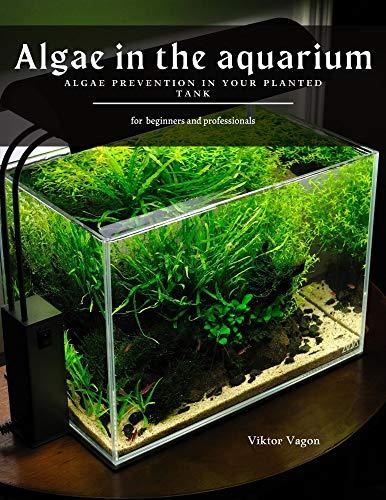 Algae in the aquarium: Algae prevention in your planted tank