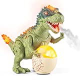 Walking Dinosaur Toy for Kids, Music Robot T-Rex Dinosaur with LED Lights, Shaking Head, Tail, Legs, Light Up & Realistic Roaring Sound, Electronic Dinosaur Toys for Toddlers Boys Girls Ages 3 4 5 6 7