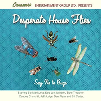 Desparate House Flies