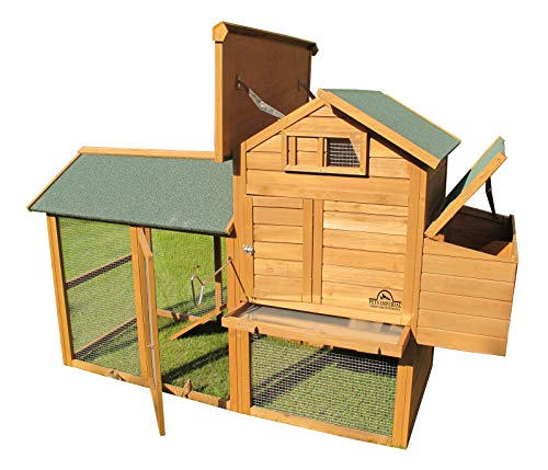 Pets Imperial® - Groß Hühnerstall Kaiserbourne - 2 bis 4 Hühner je nach Größe - innovative Verriegelung