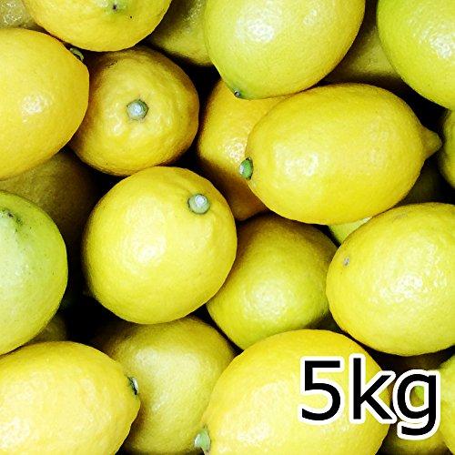 広島産 レモン 約5kg なかだい 農園直送 サイズいろいろ 皮まで食べられます 安心 広島ブランド 特別栽培農産物認定レモン国産レモン 呉市大崎下島 大長のレモン
