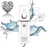 LIZONGFQ Explosion Modelle mit Hand Kaltspritzens Wassernachspeisung Instrument Gesichts Befeuchter USB-Lade Nano Face Beauty Dampfstrahl