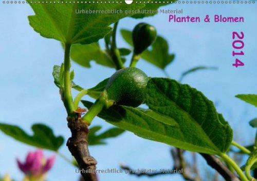 Planten & Blomen 2014 (Wandkalender 2014 DIN A2 quer): Gartenmotive begleiten durch das Kalenderjahr! (Monatskalender, 14 Seiten)