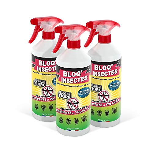 Bombe insecticide Stone Guard