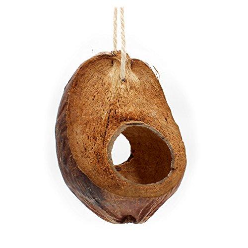 Einzigartige Vogelschaukel aus Kokosnuss mit Fruchtschale zum Knabbern. Natur- Vogelspielzeug für...