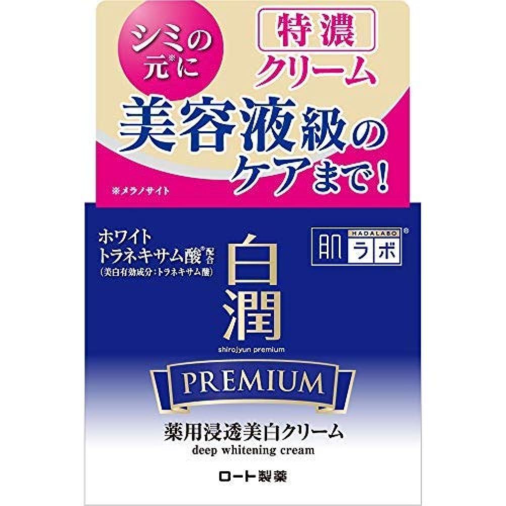 無駄一見称賛肌ラボ 白潤プレミアム 薬用浸透美白クリーム × 2個セット