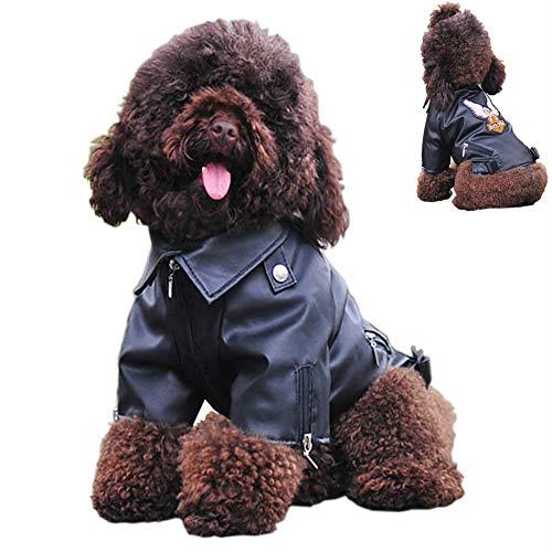 Chaqueta De Invierno para Perros Abrigo De Moto De Cuero De PU Ropa para Cachorros A Prueba De Viento Ropa Trajes Impermeables para Perro Guay para Caniche Osito De Peluche Perros Pequeños,XL