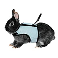 Neck perimeter: Approx. 16-20cm. Chest perimeter: Approx. 20-32cm. Back length: Approx. 12.2cm. It is made of soft polyester fabric with fully elastic leash of 120cm (47 inch), which lets your bunny have lots of freedom. You can adjust the harness mo...
