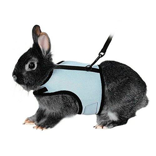 UEETEK Softgeschirr mit Blei für Kaninchen Hase - Größe XL (Himmelblau)