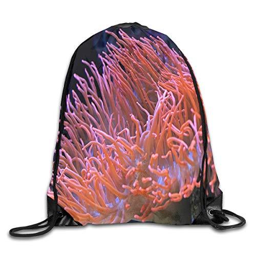 uykjuykj Sac à dos avec cordon de serrage Care of Clownfish pour gym, randonnée, voyage, design couleur 04, léger et unique 43,6 x 35,6 cm