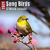 Mini Calendar 2021 Song Birds: Cute Song Bird Photos Monthly Small Calendar With Inspirational Quotes each Month