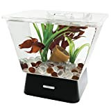 Tetra LED Betta Tank Kit 1 Gallon, Trapezoid aquarium With Base Lighting (24050)