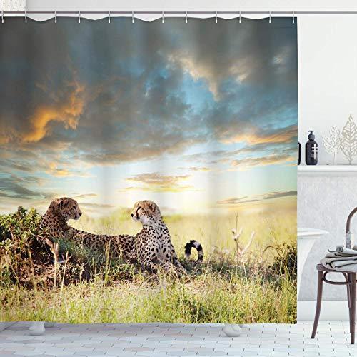 N\A Safari Duschvorhang, 2 Geparden in Afrika Natur Gras Gefährliche Tiere Jäger Regenwetter Bild, Stoff Stoff Bad Dekor Dekor mit Haken, Mehrfarbig