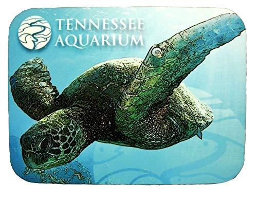 Tennessee Aquarium mit Schildkröte Foto Kühlschrankmagnet