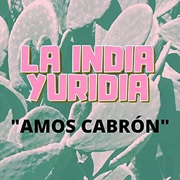 Amos Cabrón