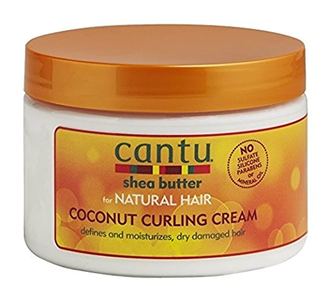 美的阻害する矢Cantu Shea Butter for Natural Hair Coconut Curling Cream 340g