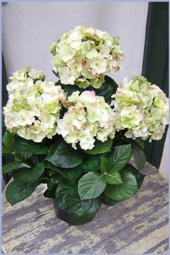 Künstliche Hortensie,cremefarben ca. 55cm sehr dekorativ Spitzenqualität-SONDERANGEBOT
