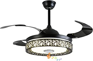 Fandian 42in Modern Smart Ceiling Fan with Lights...