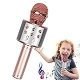 Wireless Karaoke Microphone,Bluetooth Karaoke Microphone 4-in-1 Handheld Portable Karaoke Player, Home KTV Player