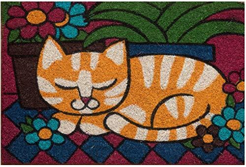 Zerbino da Esterno in Cocco con Base in PVC Dipinto a Mano Raffigurante Gatto Arancione 60X40X2 cm. Facile da Pulire e Ultraresistente
