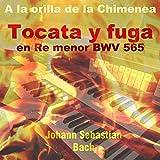 Tocata y Fuga in D Minor, BWV 565 (A la Orilla de la Chimenea Version)