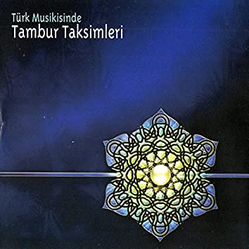 Türk Musikisinde Tambur Taksimleri
