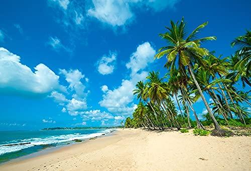Fondo de fotografía de Playa Tropical Junto al mar Verano Boda bebé cumpleaños Ducha Fiesta Foto Estudio telón de Fondo A9 10x7ft / 3x2,2 m