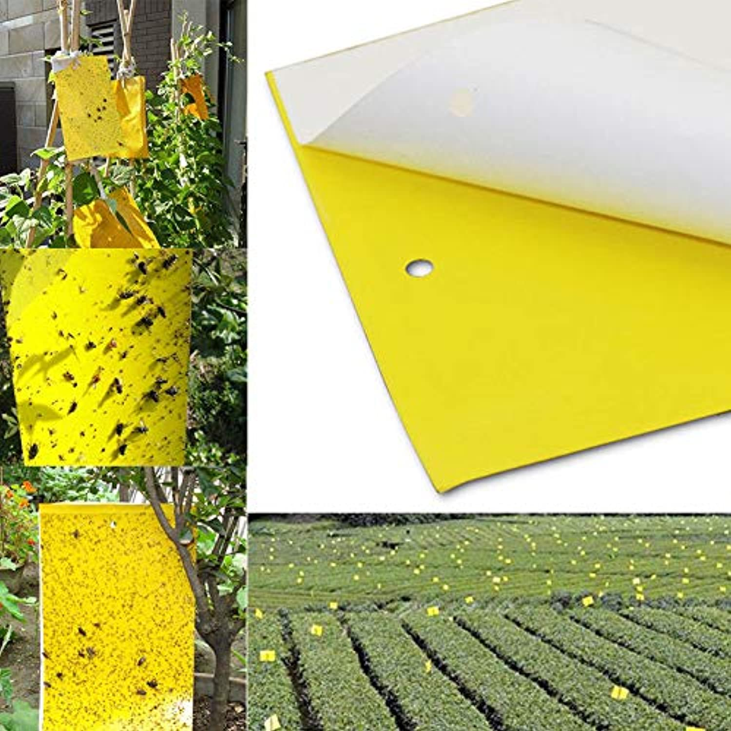 10 20 50PCS Yellow Sticky Insect Traps (25x15cm) Catch Flying Greenhouse Pests Control Strong Flies Traps Bedbugs Sticky Board   50pcs