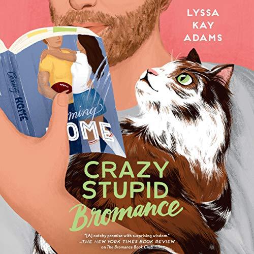 Crazy Stupid Bromance cover art