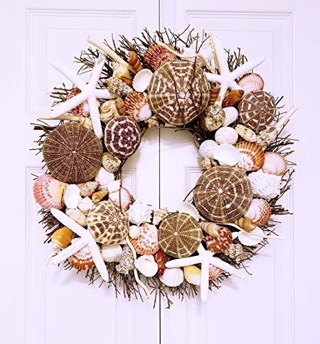 21' Sea Shell Wreath on Birch Twig with Exotic Sea Urchins & White Star Fish