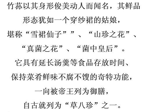 Helen Ou@ Super Bamboo-fungus Bamboo Fungus Natural No Smoked Sulfur Bacteria (竹荪 竹笙)