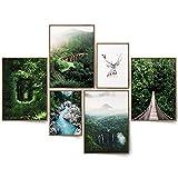 BLCKART Green Forest Bilder Set Stilvolle Beidseitige