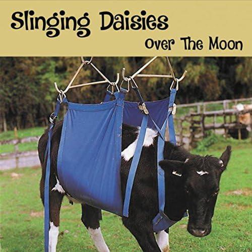 Slinging Daisies