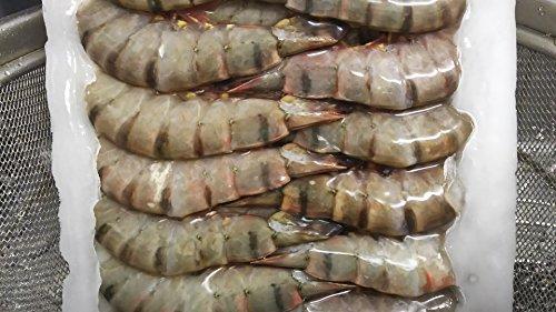 海老フライ や 天ぷら用 31-40 ブラックタイガー 1.8kg ( 約140匹 ) アイスブロック