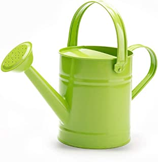 علب سقي النباتات المعدنية في الهواء الطلق مع مقبض ، سهلة الاستخدام للنباتات في الهواء الطلق والحدائق ، معدات الري الخضراء ...