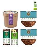 eat Performance Schoko Box (2 Cookie, 2 Riegel, 1 Müsli) - Bio, Paleo, Ohne Zuckerzusätze Aus 100% Natürlichen Zutaten
