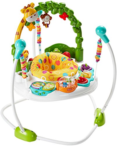Fisher-Price Jumperoo: Go Wild