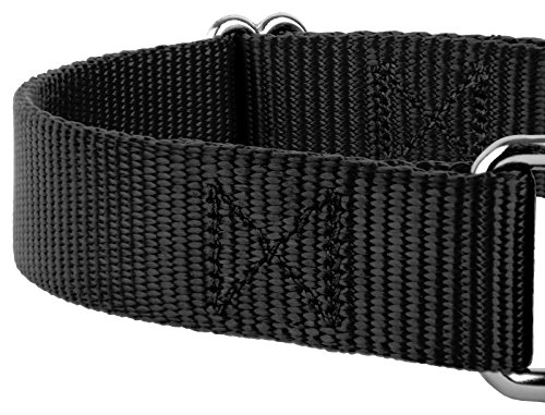 Country Brook Design - Martingale Heavyduty Nylon Dog Collar (Large, 1 Inch Wide, Black)